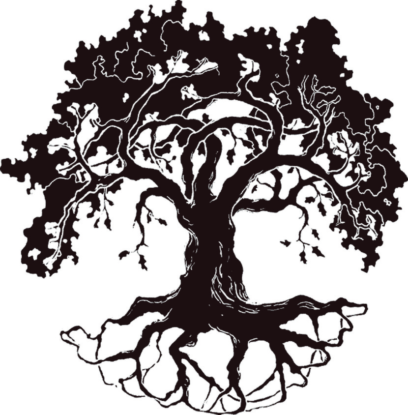 830x844 Free Black And White Clipart Tree With Roots