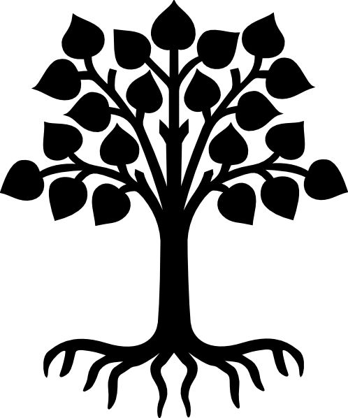 498x598 Roots From A Tree On A Poster Board Clipart