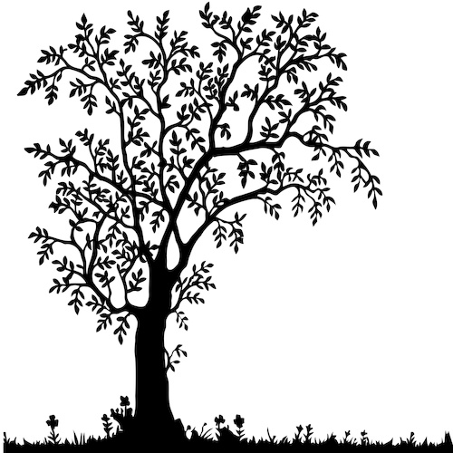 500x500 Removable Tree Wall Decal Art For Walls