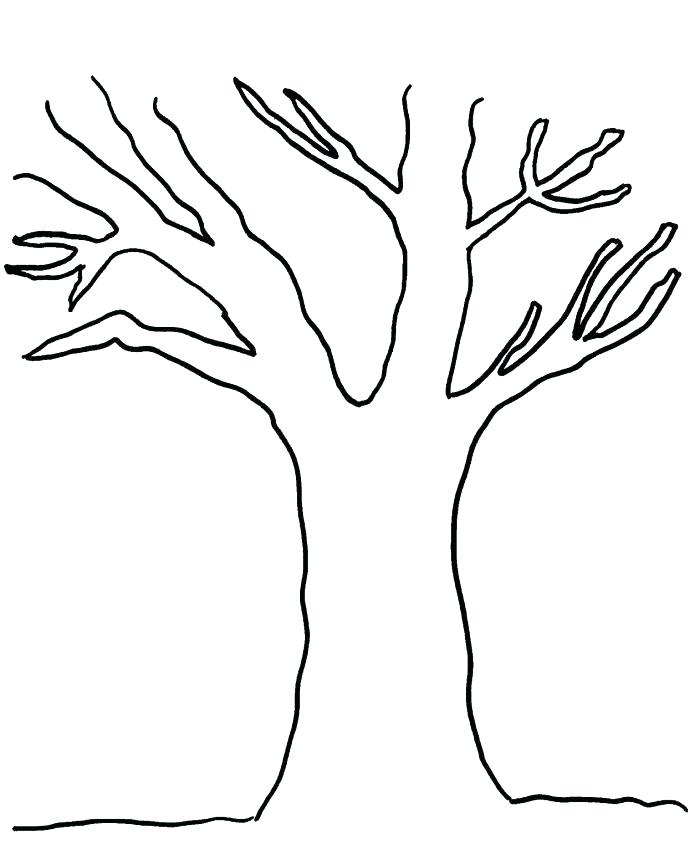 Tree Without Leaves Drawing