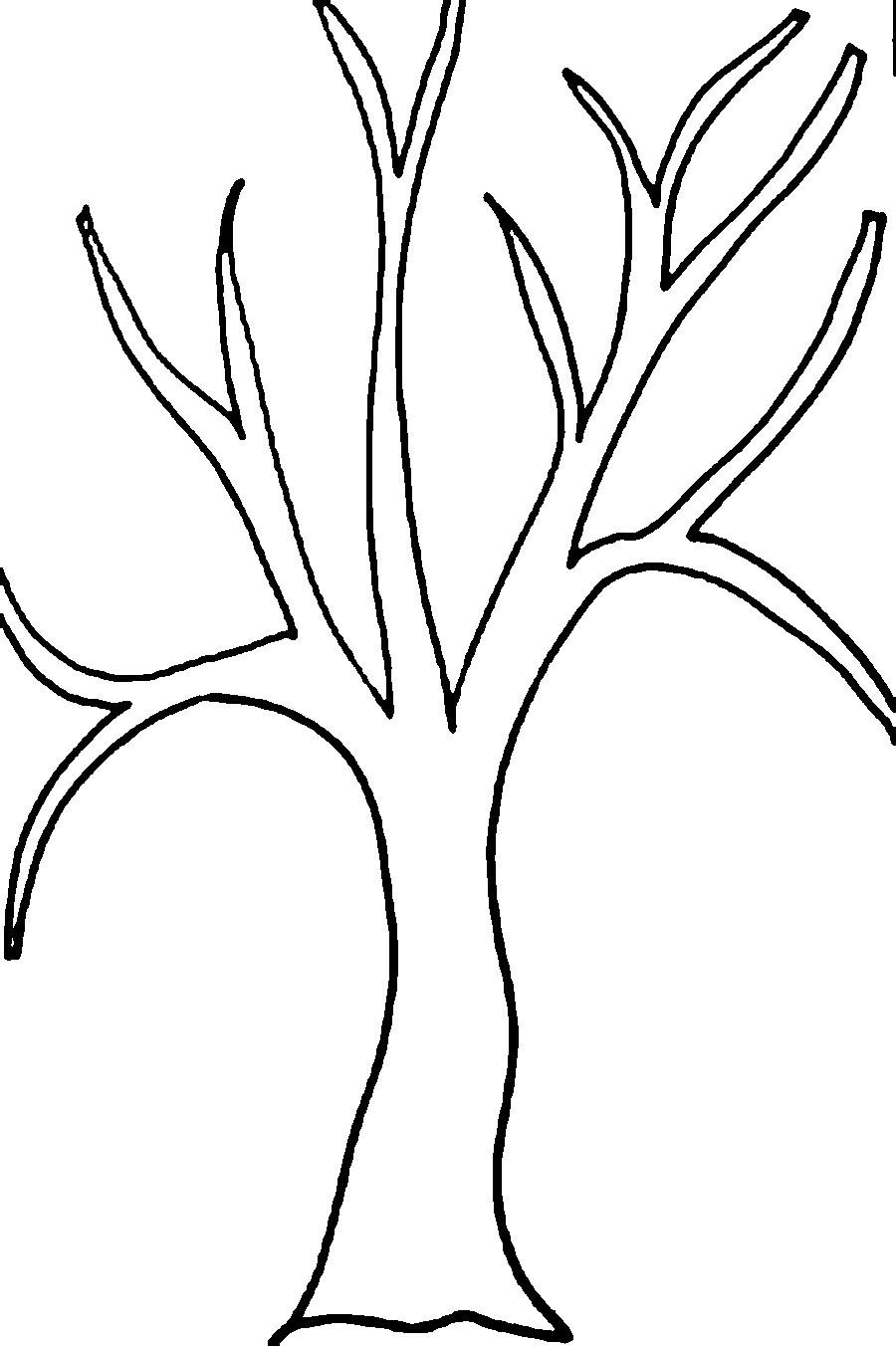 Tree Without Leaves Drawing at GetDrawingscom Free for personal