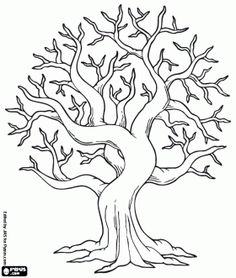 236x278 Tree Without Leaves Template Coloring Page Free Download