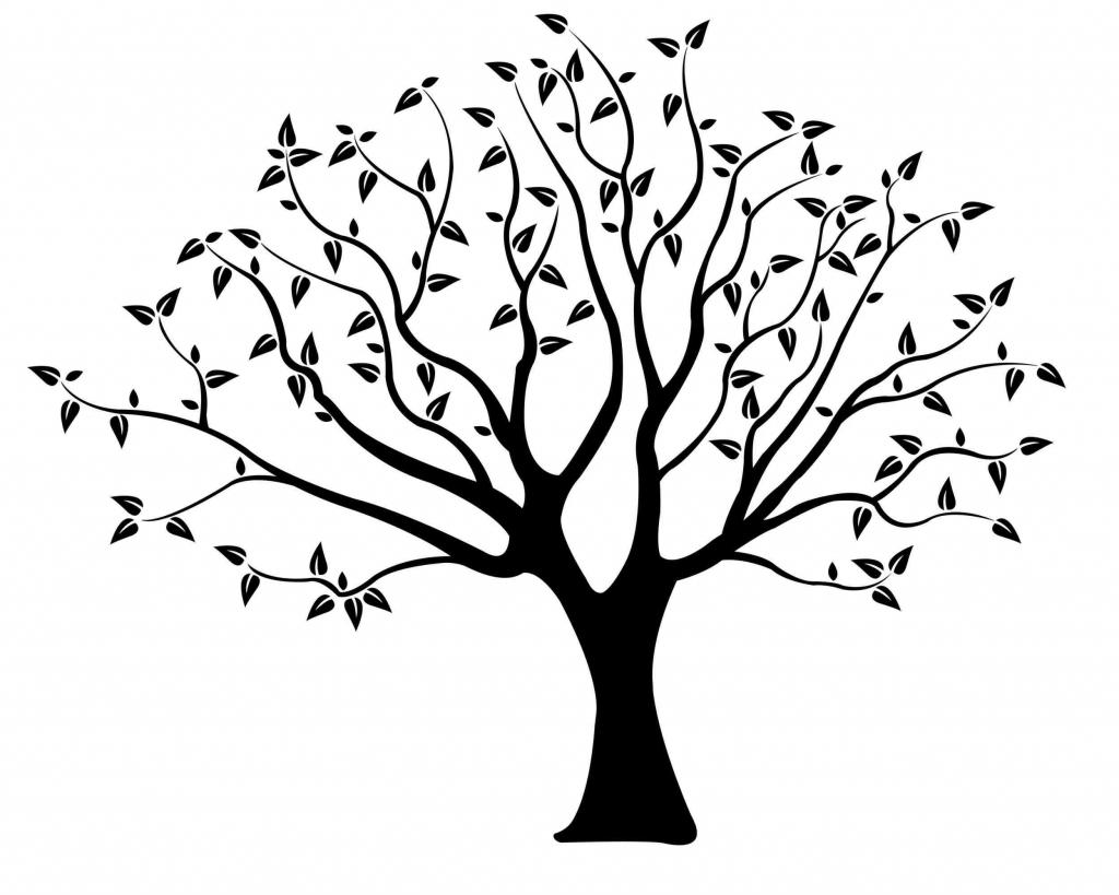 1024x819 Line Drawing Of Tree Oak Tree Line Drawing Ngorongclub