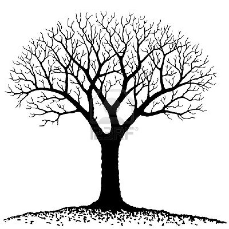736x736 Tree Line Art Work
