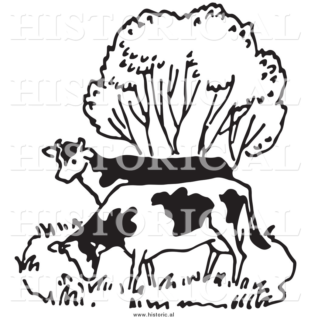 1024x1044 Illustration Of A Couple Of Cows Grazing Beside A Tree