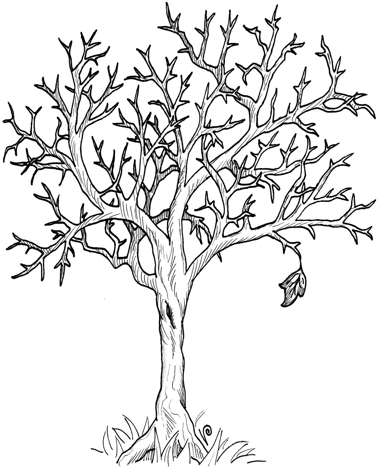 1295x1600 Spring Tree Clipart Black And White