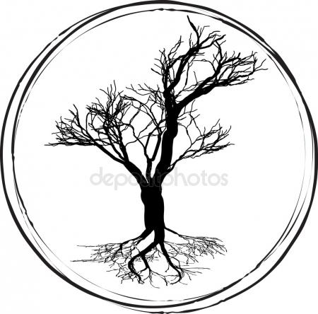 450x444 Stylized Black And White Drawing Of A Branch Of Fig Tree Stock