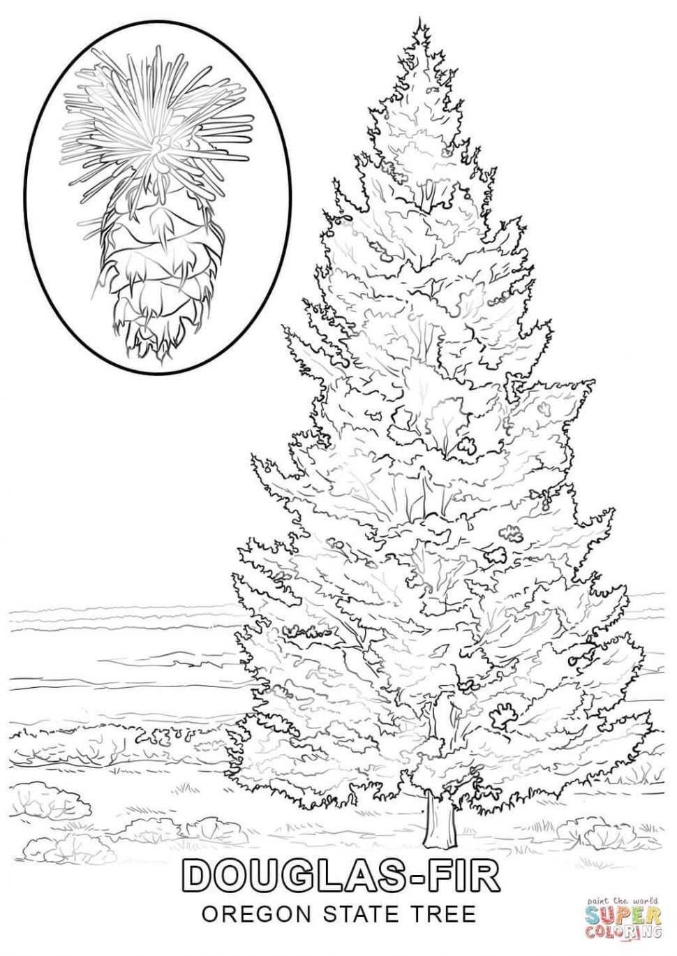 970x1369 Coloring Pages Evergreen Trees Fresh Coloring Pages Coloring Pages