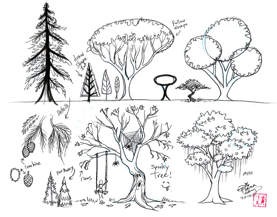 900x704 Draw Trees By Diana Huang