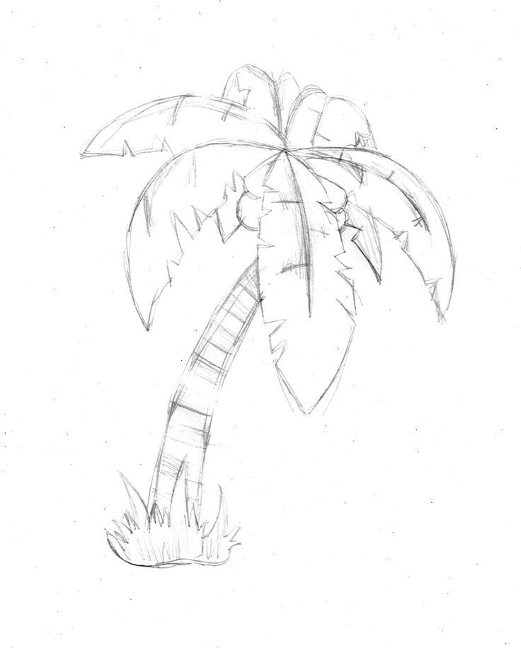 736x916 Drawn Palm Tree Line Drawing