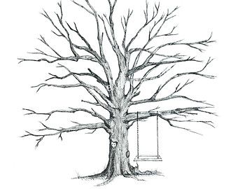 Trees Drawing Without Leaves