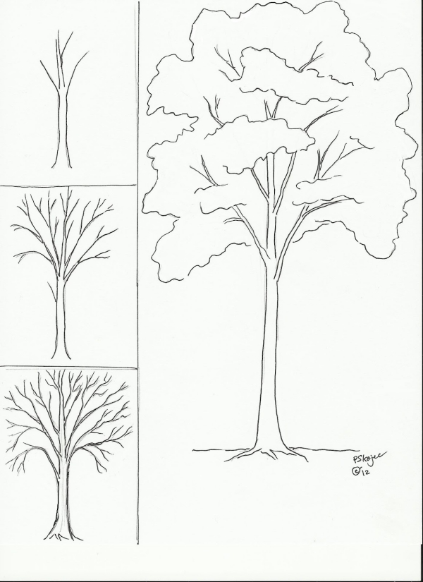 Trees Easy Drawing