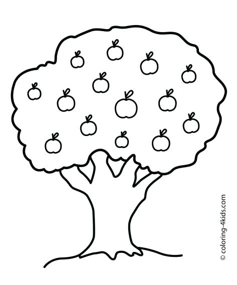 473x568 Coloring Pages Trees