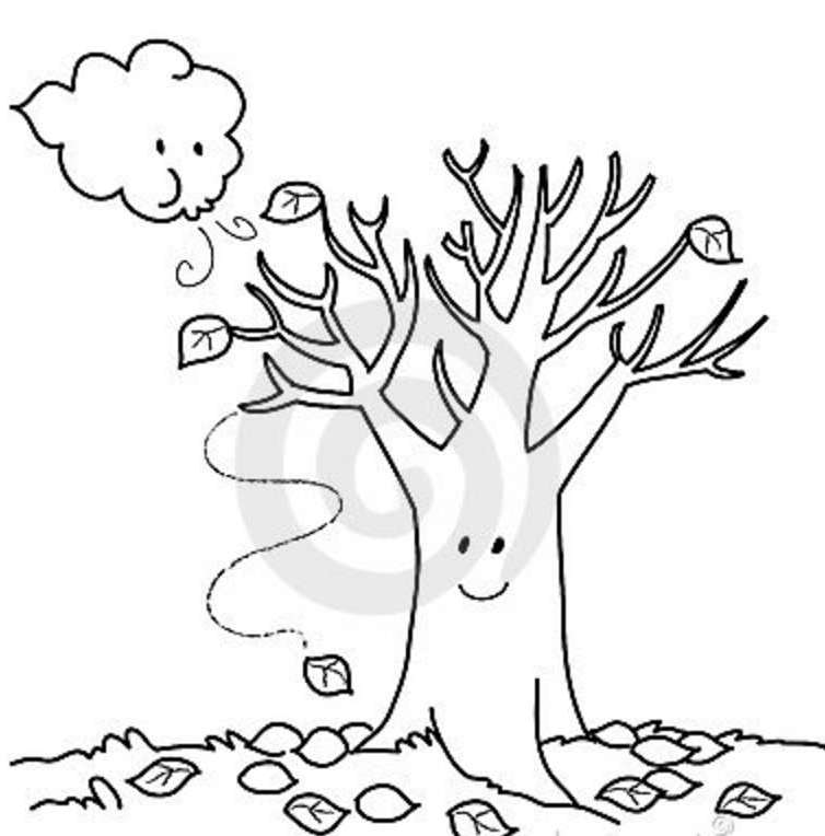 754x764 Coloring Pages Fall Trees Kids Drawing And