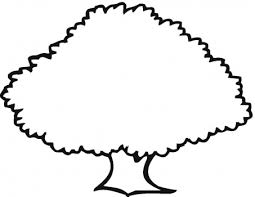 255x197 Image Result For Tree Outline Drawings For Kids My School
