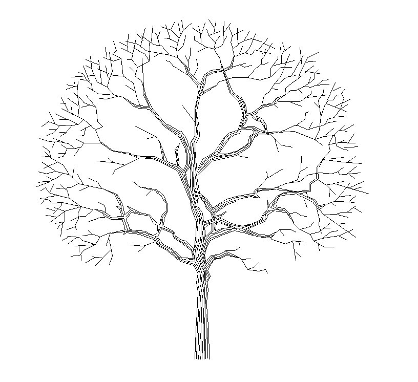 816x746 Free Autocad Block Tree Elevation
