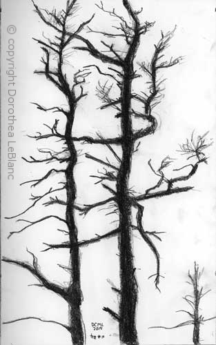 313x500 Realism Dorothea Leblanc Art