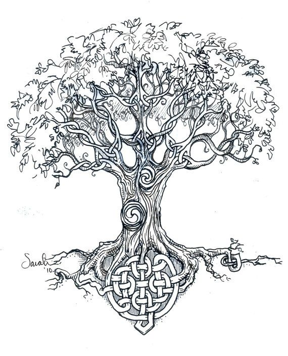 570x705 Ash Tree Tattoos Ideas And Meanings