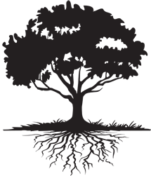 215x251 Tree With Roots Clipart Black And White