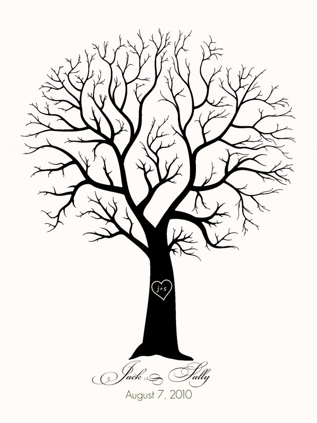 618x824 Adult Tree Without Leaves Template Tree Without Leaves Pattern