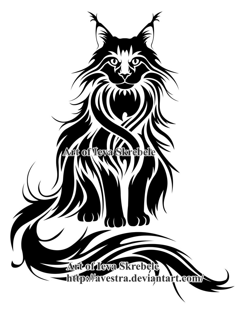 800x1024 Maine Coon Cat Logotype By Avestra