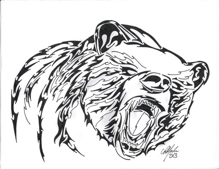 736x568 Tribal Bear Drawings