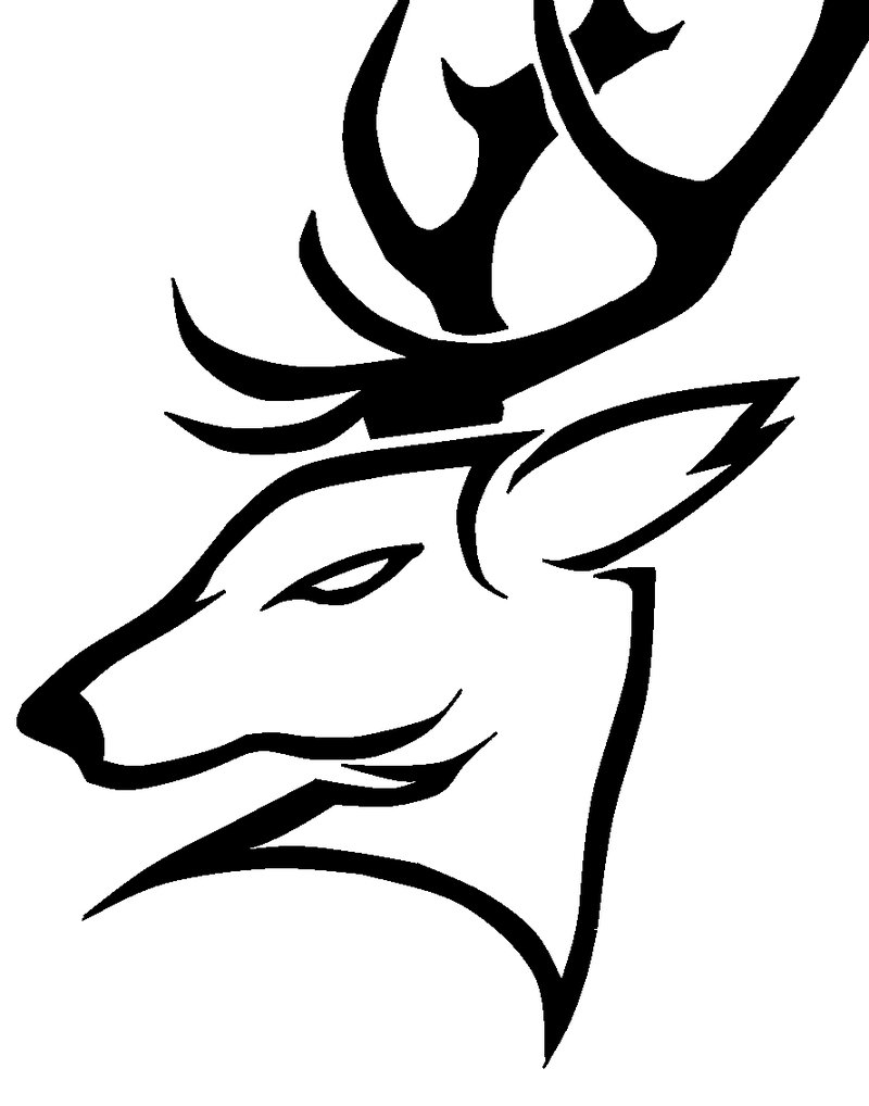 800x1018 12 Stunning Tribal Deer Tattoos Only Tribal