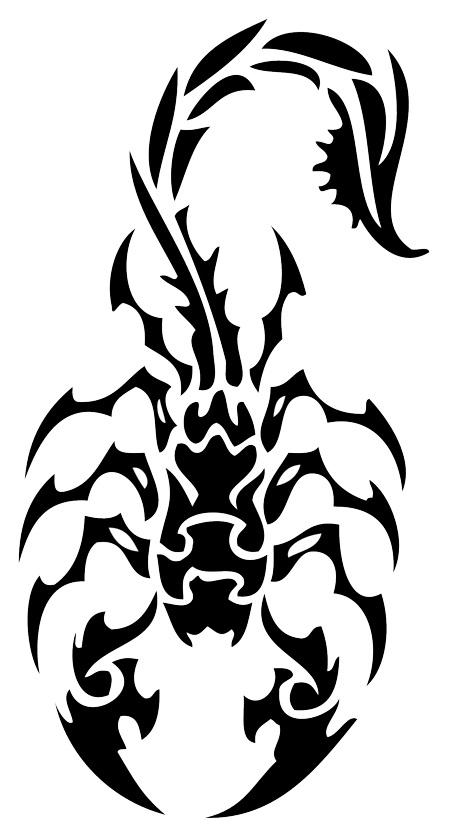 450x833 Scorpion Tattoo Design