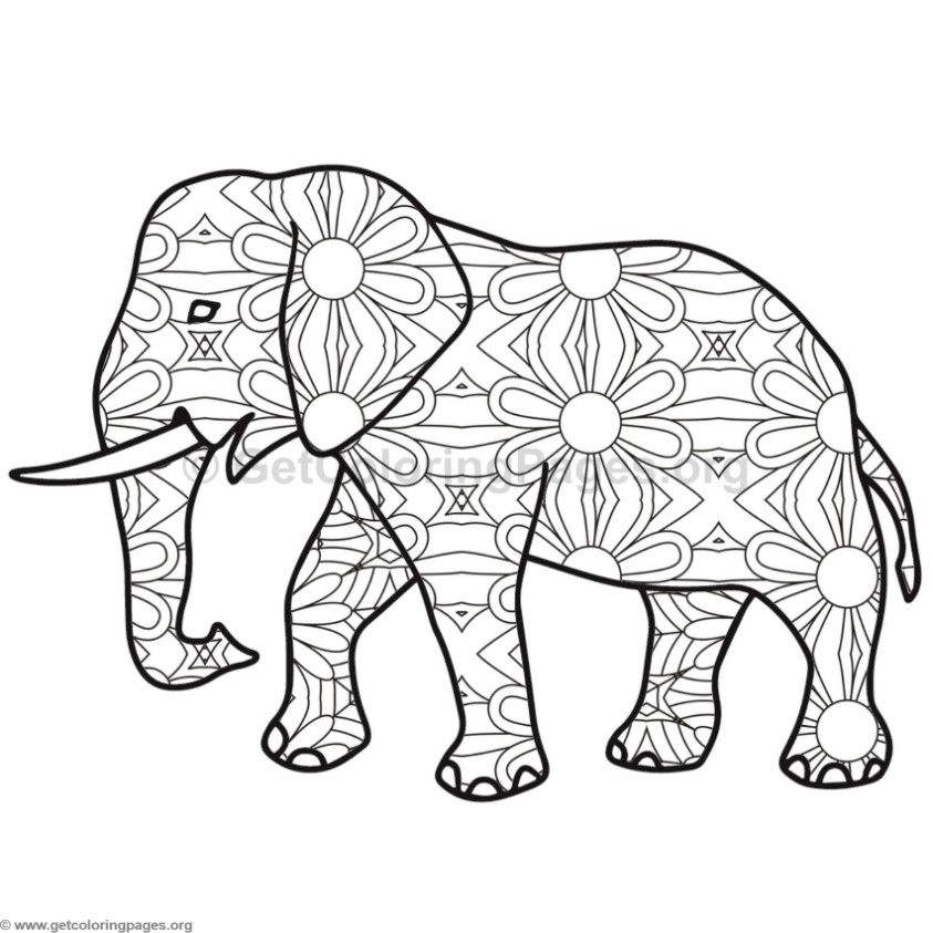 843x843 Asian Elephant Coloring Pages African