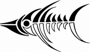 310x181 Drawing Fish Skeleton Clip Art 25