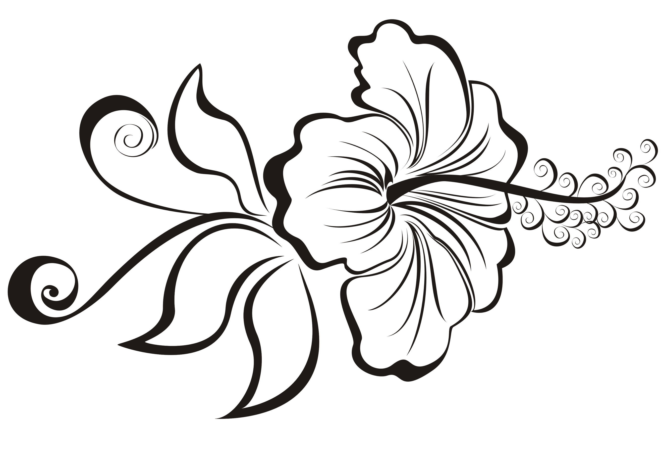 Tribal Flower Drawing At Getdrawings Free For Personal Use