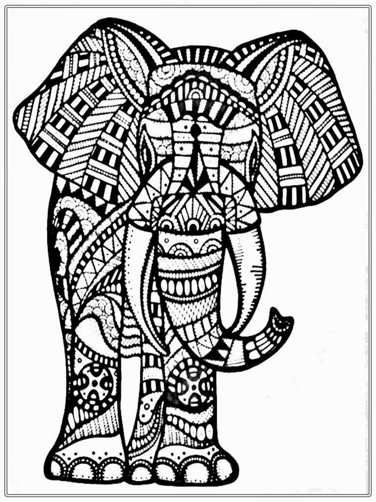 736x981 Tribal Elephant Coloring Pages For Adults Colouring Snazzy Print