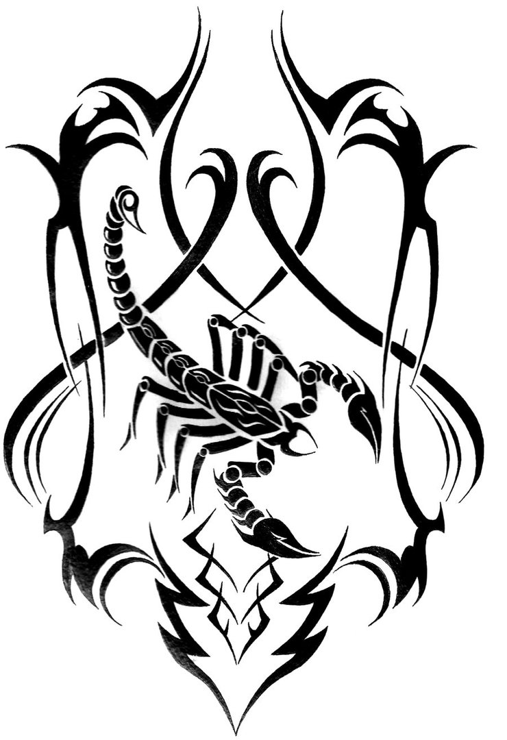 740x1080 Tribal Scorpion By Lucky Louie