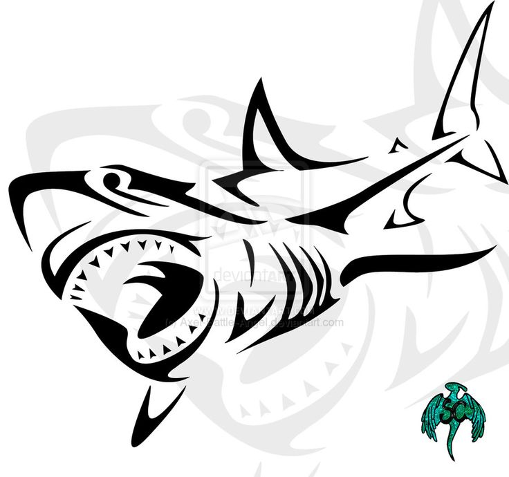 Tribal Shark Drawing At Getdrawings Com Free For Personal Use