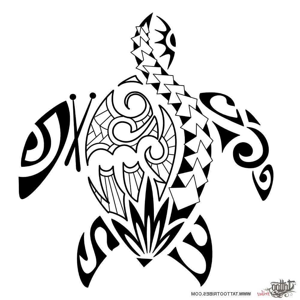 01917c30d 1000x1000 Polynesian Tribal Turtle Tattoos Polynesian Tribal Turtle Tattoo
