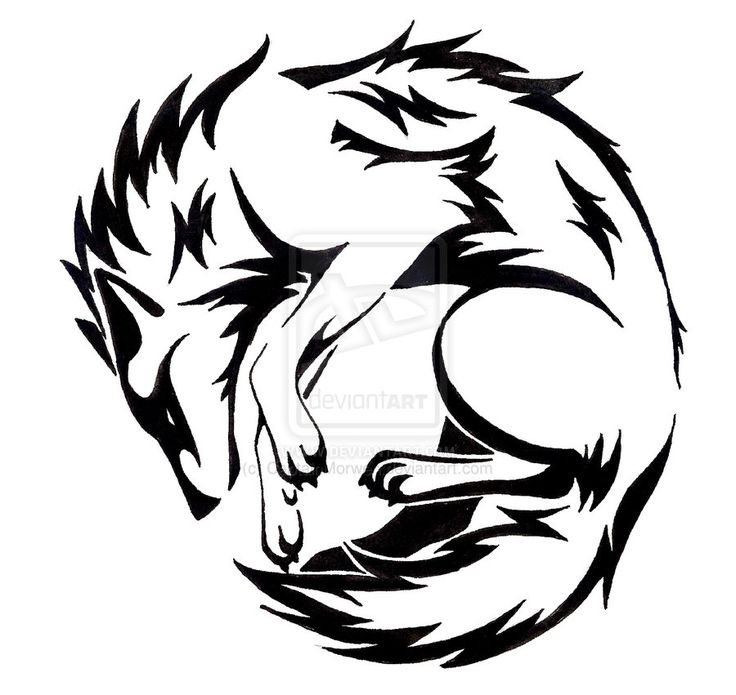 736x695 Collection Of 25 Tribal Wolf Tattoo Design