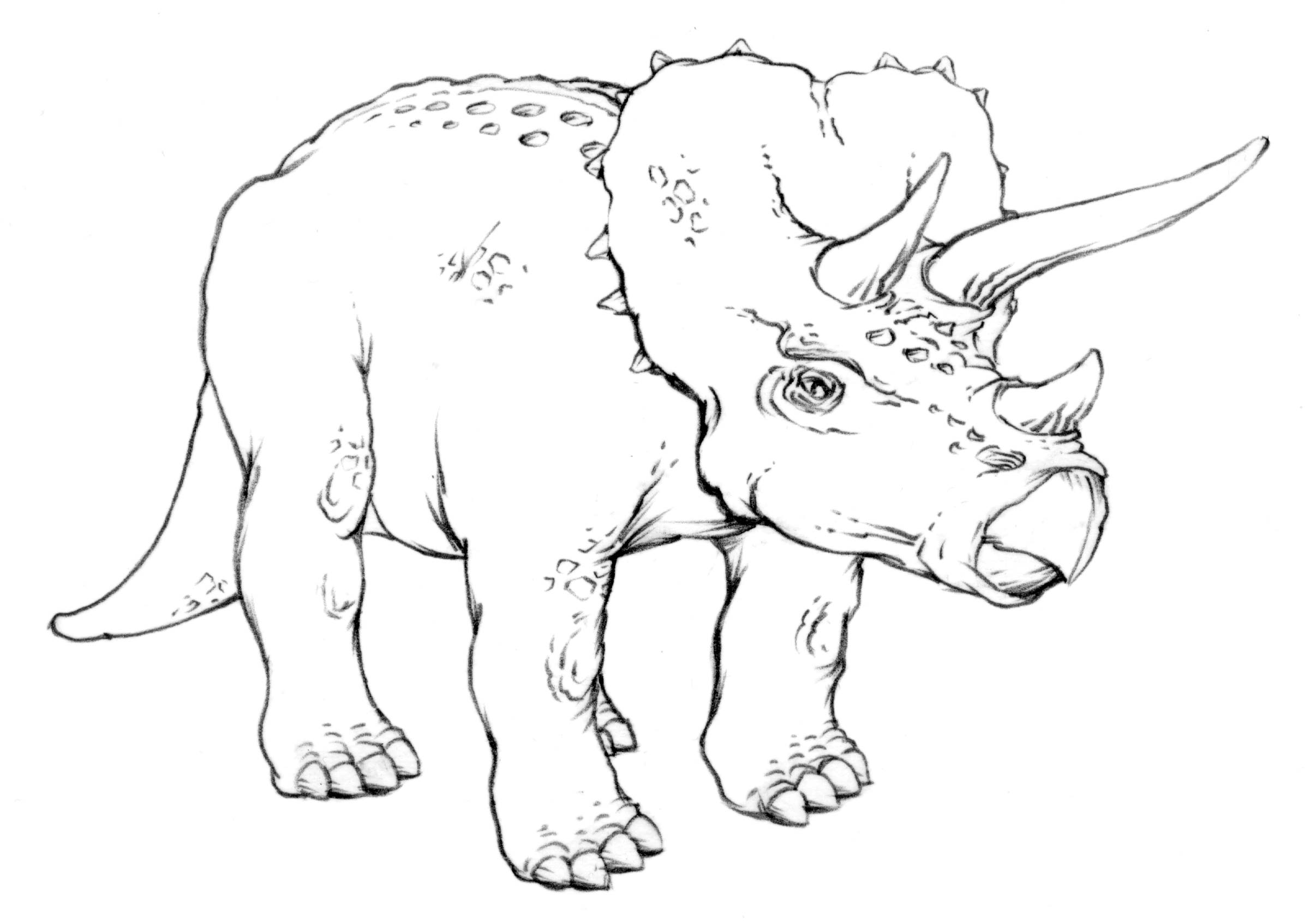 2412x1688 Drawing Lesson Triceratops The Scribbles Institute