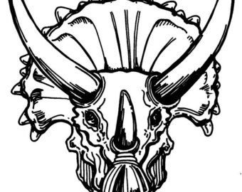 340x270 Triceratops Skull Etsy