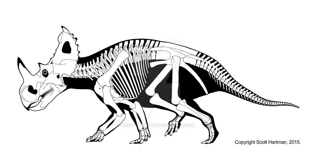 1024x522 Centrosaurus Apertus By Scotthartman Paleontology