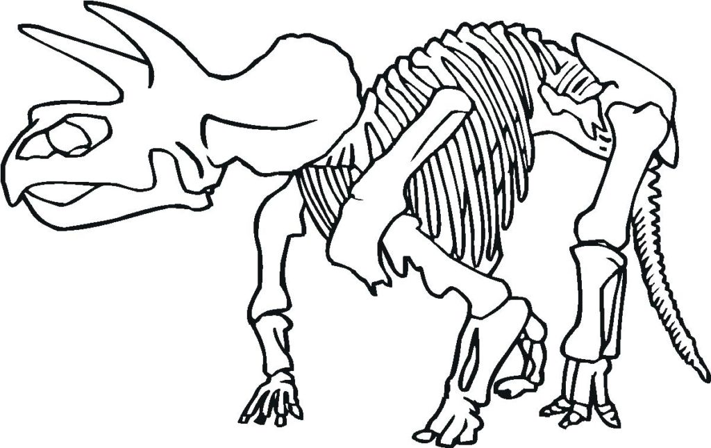1024x645 Coloring Fascinating Skeleton Sheet Dinosaur Fossils At Page