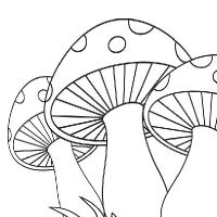 200x200 Drawing Mushroom