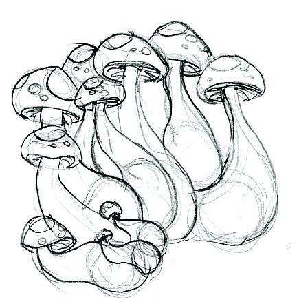 432x441 Drawn Mushroom Drug Many Interesting Cliparts