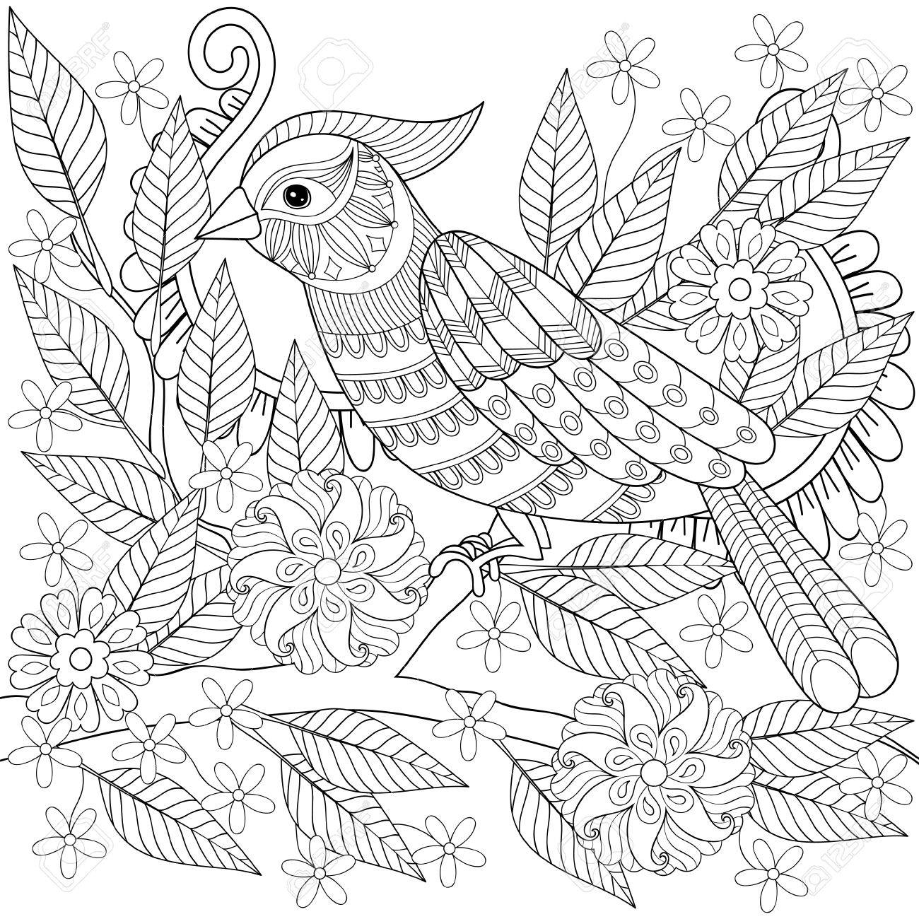 1300x1300 Adult Anti Stress Coloring Page With Tropical Bird. Hand Drawn