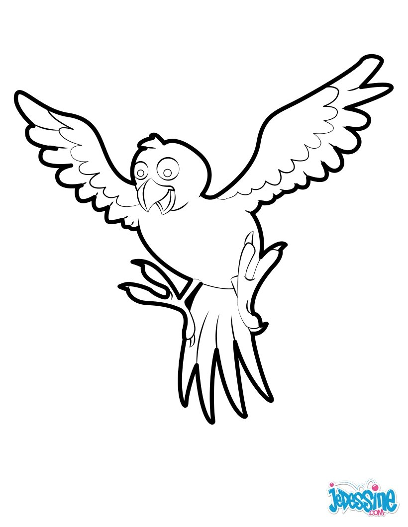 820x1060 Tropical Bird Coloring Pages