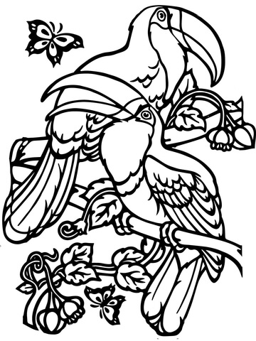 360x480 Two Toucans Coloring Page Coloring Pages Paper