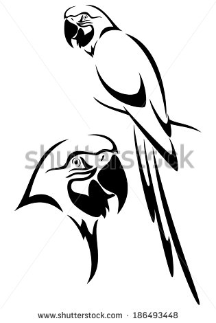 315x470 Tropical Parrot And Bird Head Black And White Vector Outline
