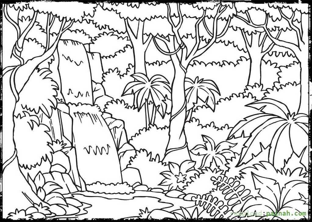1024x728 Amazon Rainforest Coloring Pages Tropical Colori On Charming