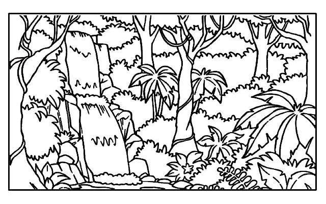 640x400 Tropical Rainforest Colouring Book Coloring Page For Kids