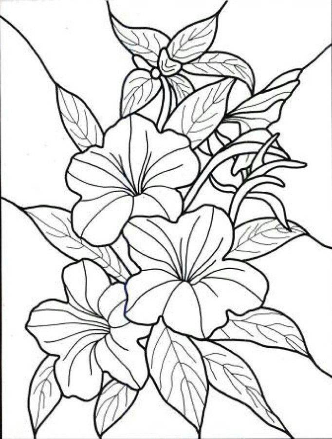 682x900 Tropical Flowers Stained Glass Tropical Flowers