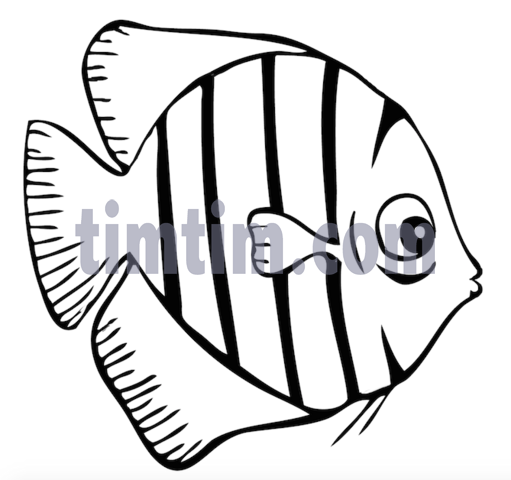 511x480 Free Drawing Of A Tiger Fish Bw From The Category Fish
